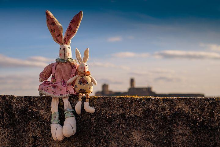 rabbit-1158594__480.jpg